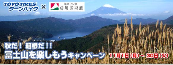 2010113top_fujisan.jpg
